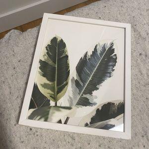 Palm Leaf Painting & Frame